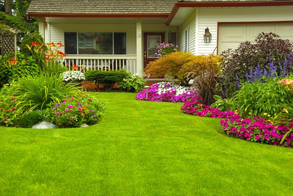 THICKLY LANDSCAPED FRONT WALKWAY TO SIMPLE WHITE PORCH GARDEN IDEAS
