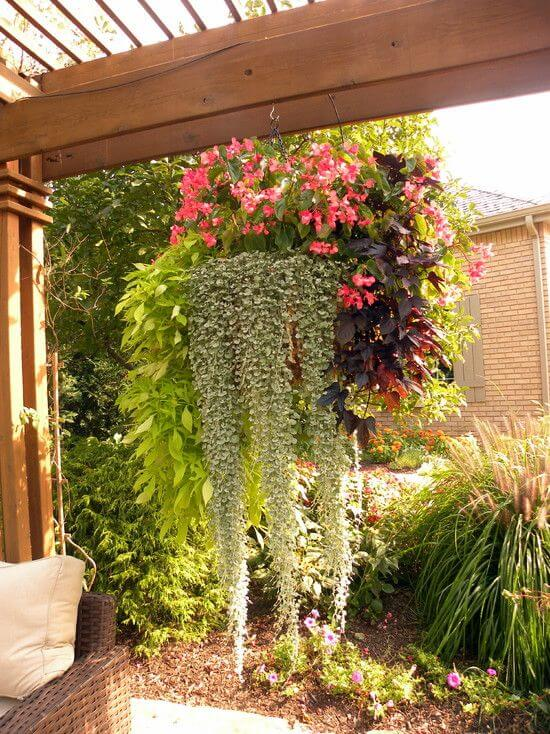 SUN SHADE FOR PATIO WITH HANGING PLANTS