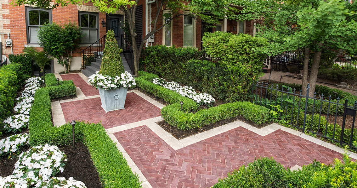 ARRANGE SOME PLANTS TO MAKE A PATIO LOOK MORE BEAUTIFULL