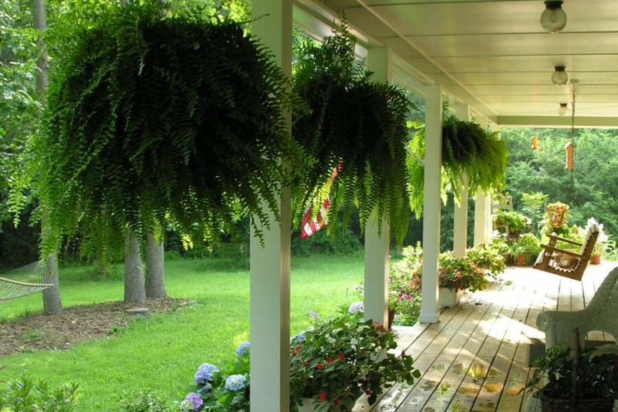 HANG PLANTS OR FLOWER POTS FOR INEXPENSIVE PATIO SHADES IDEAS